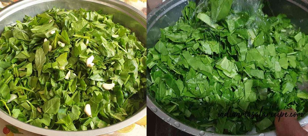 Palak-paneer-recipe
